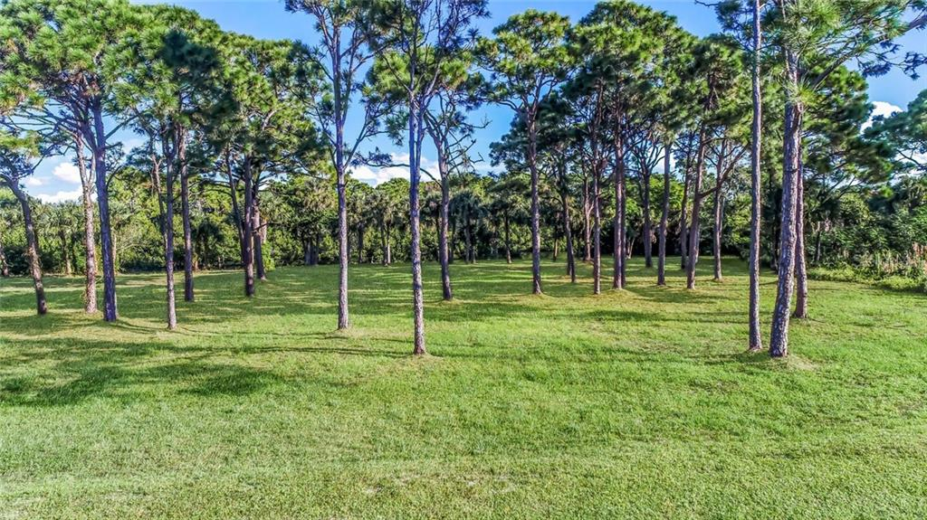 Seller's Property Disclosure - Unimproved - Vacant Land for sale at 10200 Creekside Dr, Placida, FL 33946 - MLS Number is D6108874