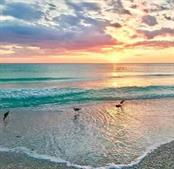 Mesmerizing sunset on Venice Beach - Villa for sale at 849 Tartan Dr #10, Venice, FL 34293 - MLS Number is D6115682
