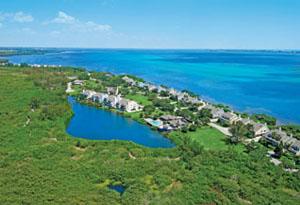 Tidy Island