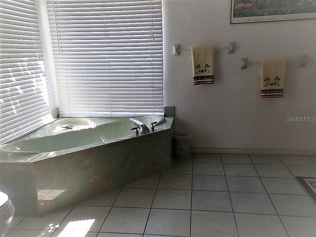 MASTER BATH SOAKING TUB - Single Family Home for sale at 16100 Water Oak Ct, Punta Gorda, FL 33982 - MLS Number is C7250659