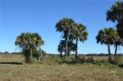 Vacant Land for sale at Sw Senate St, Arcadia, FL 34266 - MLS Number is C7424715