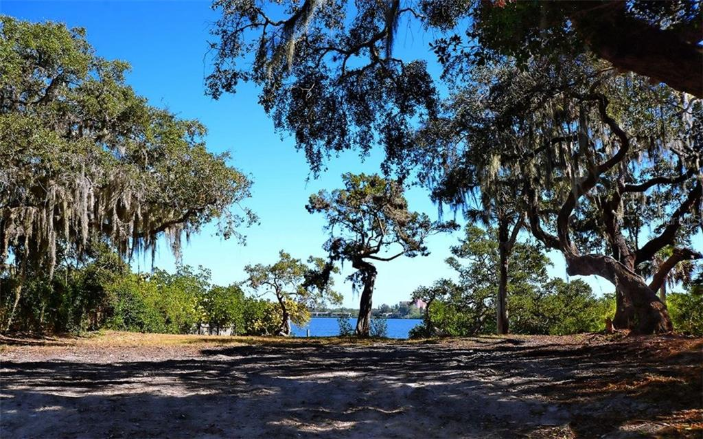 Waterfront foliage - Vacant Land for sale at 8535 Midnight Pass Rd, Sarasota, FL 34242 - MLS Number is A4146348