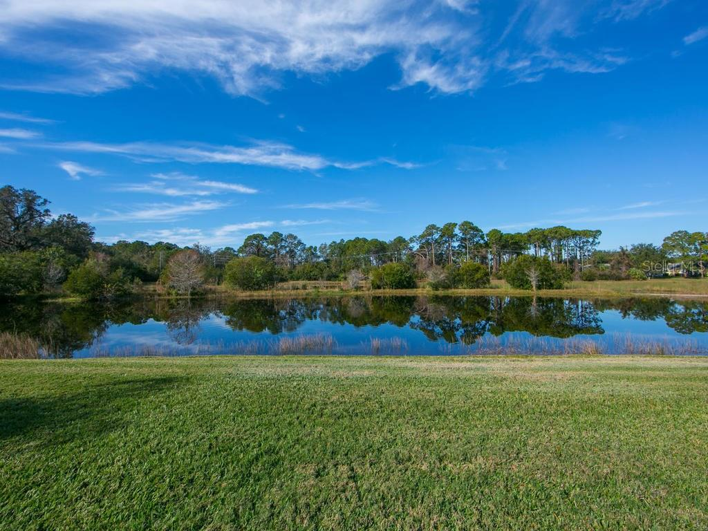 Backyard lake view - Single Family Home for sale at 1010 Oak Preserve Ln, Osprey, FL 34229 - MLS Number is A4207598