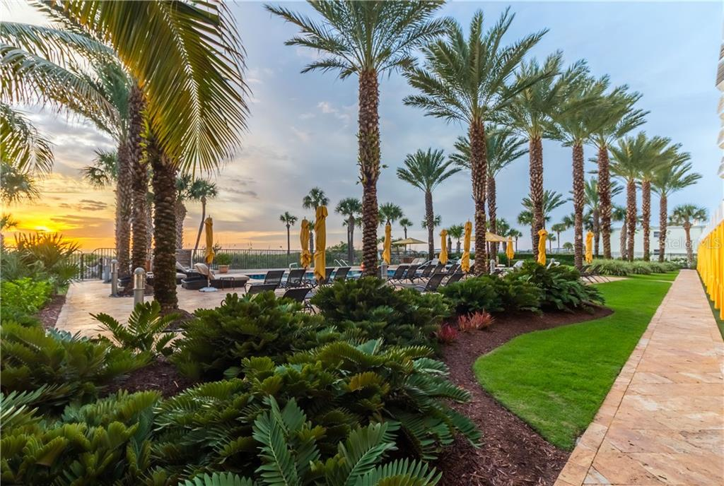 Manicured grounds around the pool. Staff will set up chairs and umbrellas for you, both pool and beachside. - Condo for sale at 915 Seaside Dr #610, Sarasota, FL 34242 - MLS Number is A4417976