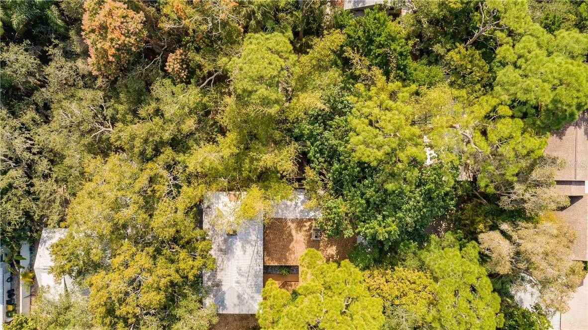 An aerial view shows the mature trees which provide shade and privacy. - Single Family Home for sale at 1666 Hillview St, Sarasota, FL 34239 - MLS Number is A4459323