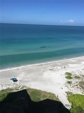 Pod of 20 manatees, seen from balcony - Condo for sale at 1050 Longboat Club Rd #1005, Longboat Key, FL 34228 - MLS Number is A4432660