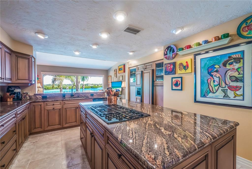 Granite counters and solid wood cabinets - Single Family Home for sale at 1253 Riegels Landing Dr, Sarasota, FL 34242 - MLS Number is A4203768